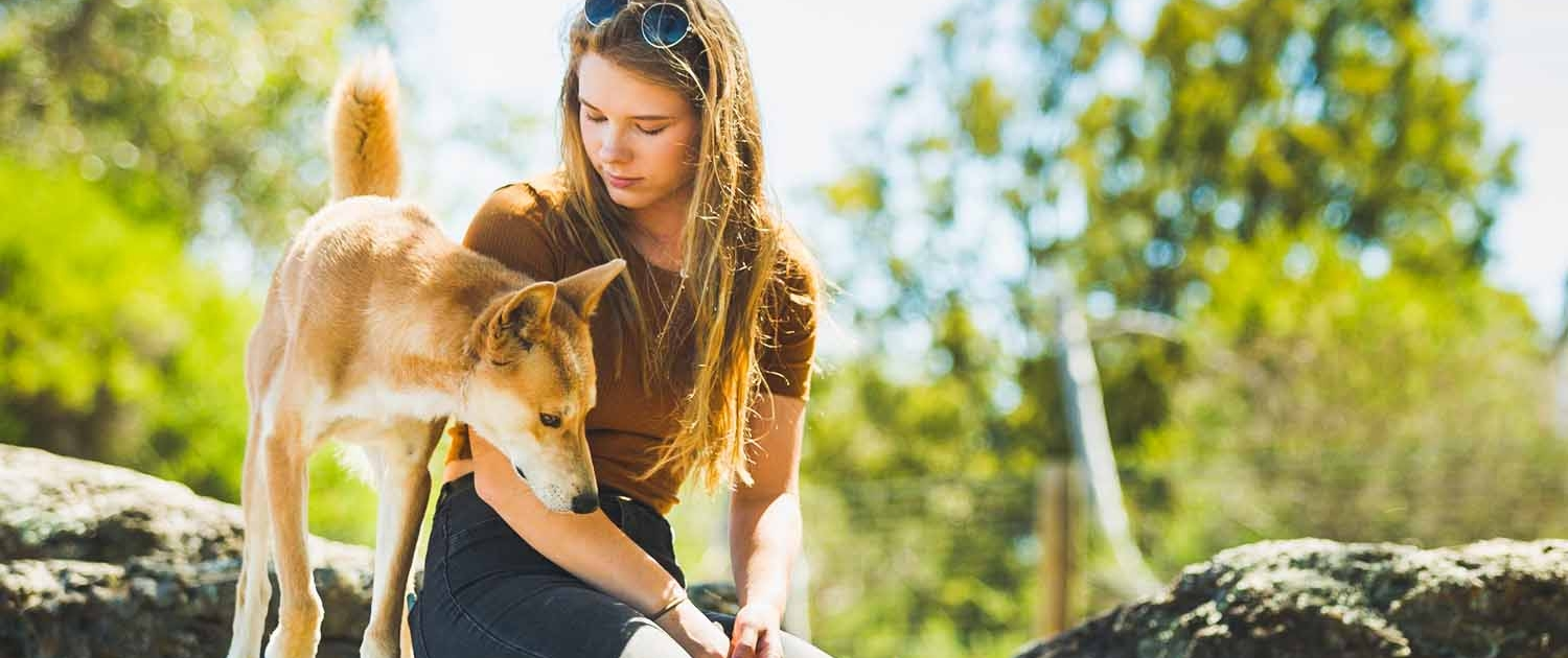 Girl with dingo in close up encounter at Moonlit Sanctuary Wildlife Conservation Park
