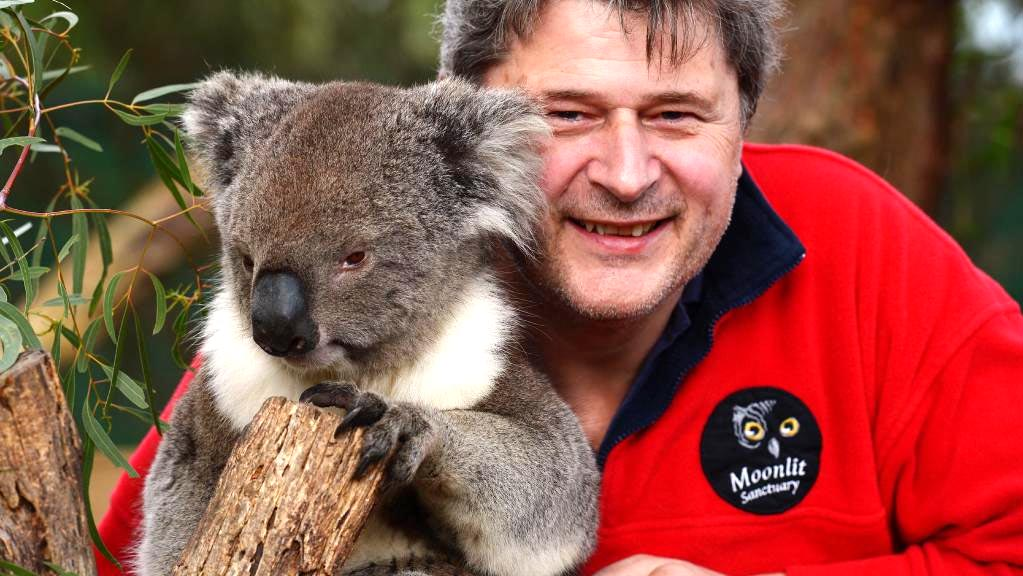 Michael Johnson, owner and founder of Moonlit Sanctuary Wildlife Conservation Park, with koala