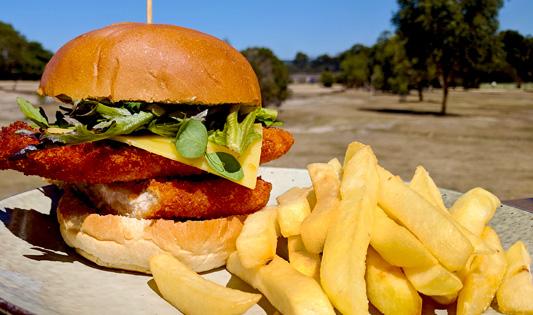 Chicken schnitzel burger at Moonlit Sanctuary Wildlife Conservation Park