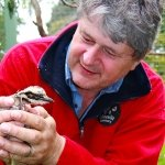 Michael Johnson, owner and founder of Moonlit Sanctuary Wildlife Conservation park, holding bush-stone curlew chick